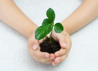 gardening lessons for kids