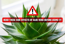 Aloe Vera Side Effects