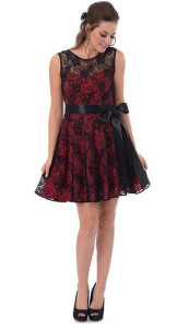 Cute Red & Black Dress with Net Overlay