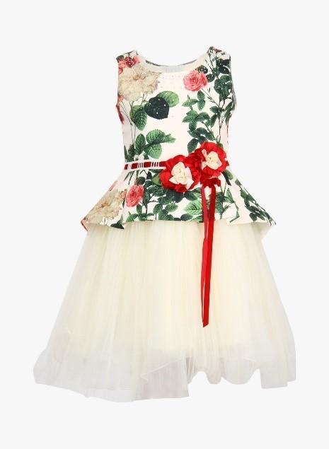 Floral Part Dress