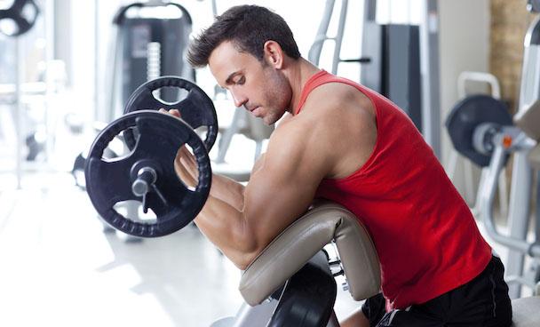Biceps 6
