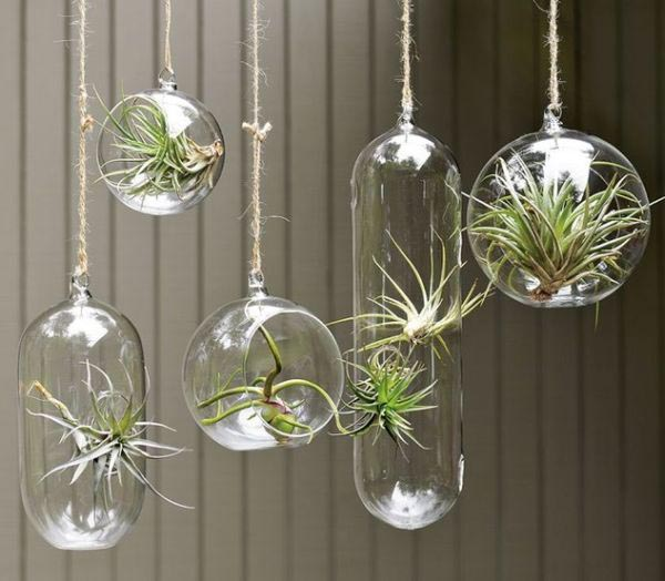 Pyrex Glass Indoor Hanging Planters - 15 Elegant Hanging Planters For Urban Homes LivingHours