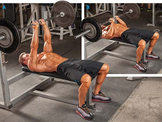 Triceps 6