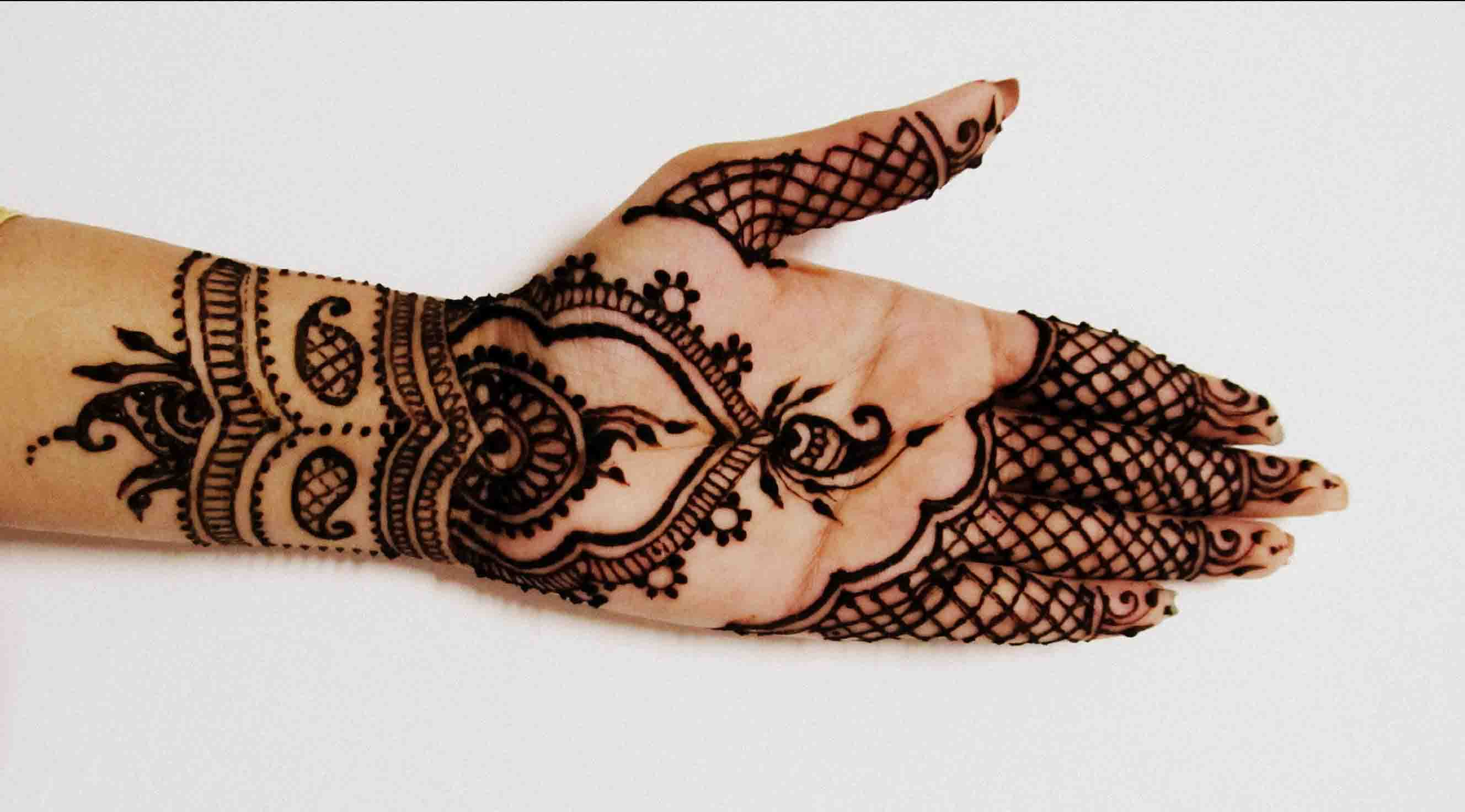 Henna with the Look of Net