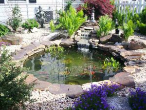 Add a Small Pond
