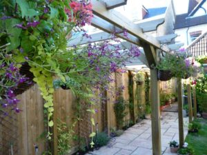 Install a Low Fences or Trellis