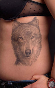 Real Looking Wolf