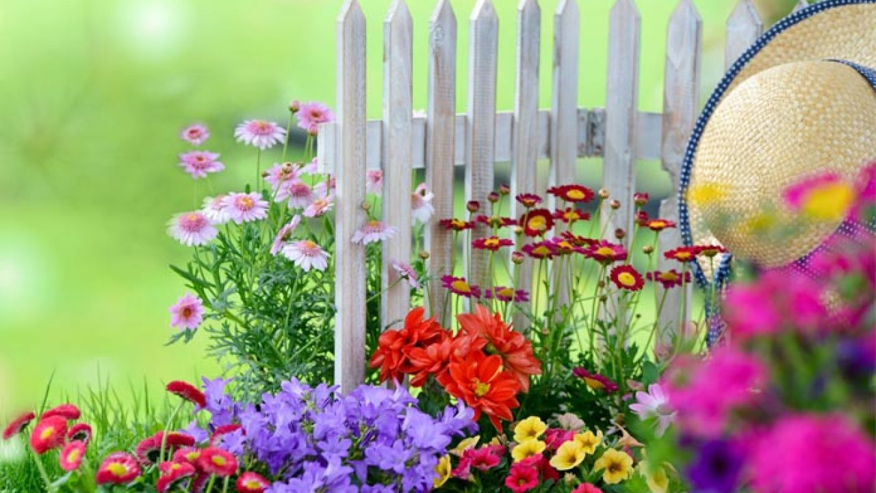 10 Awesome Tips For A Beautiful Flower Garden Livinghours