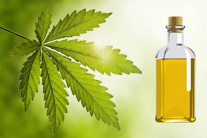 8 Amazing Benefits of Using Neem Oil For Hair | LivingHours
