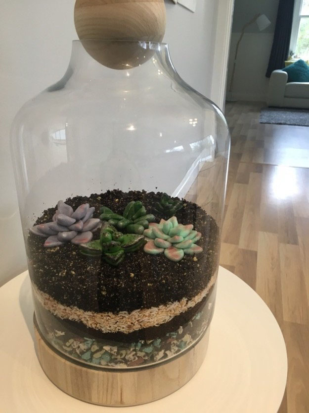 terrific-terrarium-cake