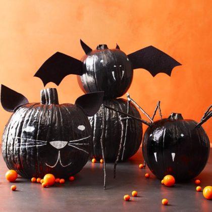black-pupmkin