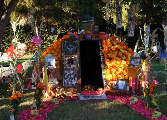 Day of the Dead Decorations 3