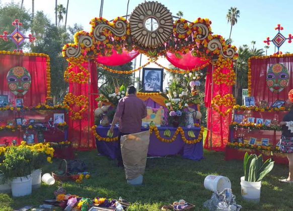 Day of the Dead Decorations 7