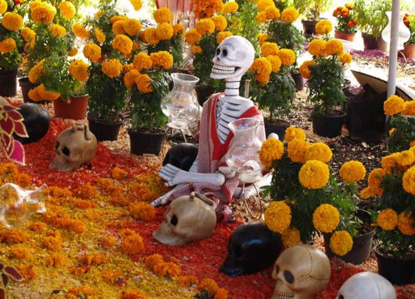 Day of the Dead Decorations 14