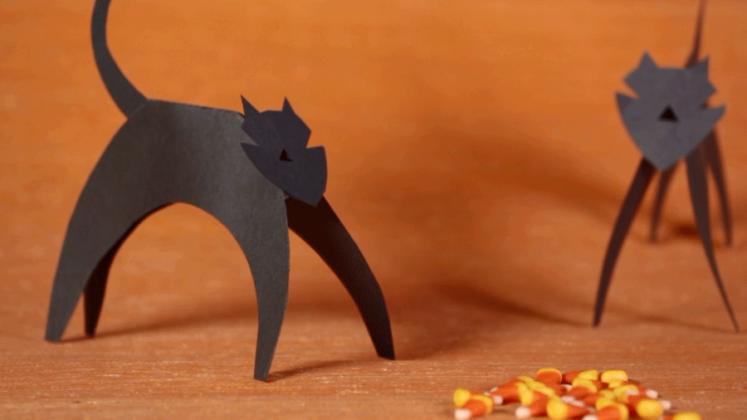 paper-cat