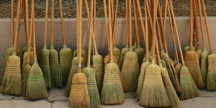 broom-hiding-in-norway