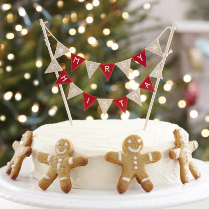 christmas-cake-decorations-07