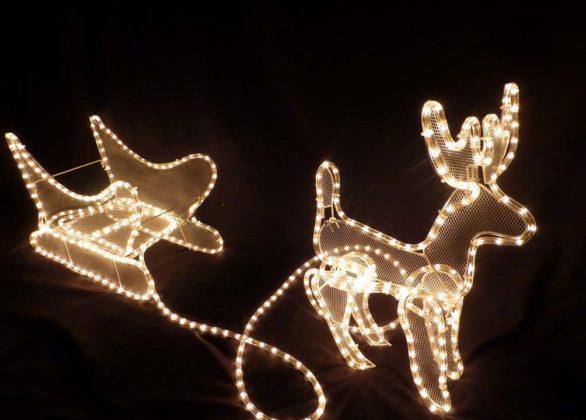 christmas-reindeer11