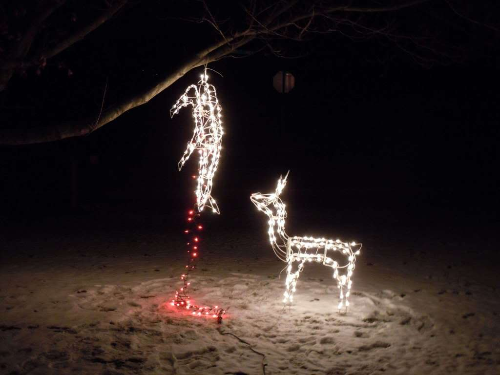 funny-xmas-decoration-13