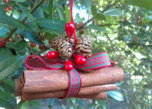 rustic-outdoor-christmas07