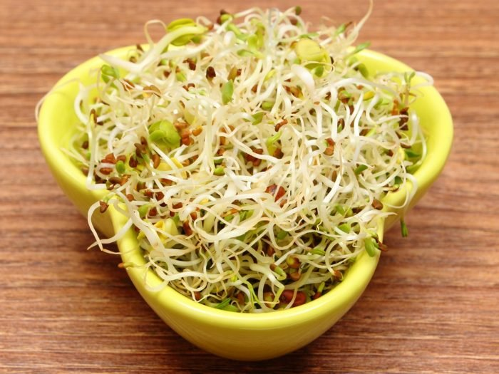 benefits of sprouts- alfalfa sprouts