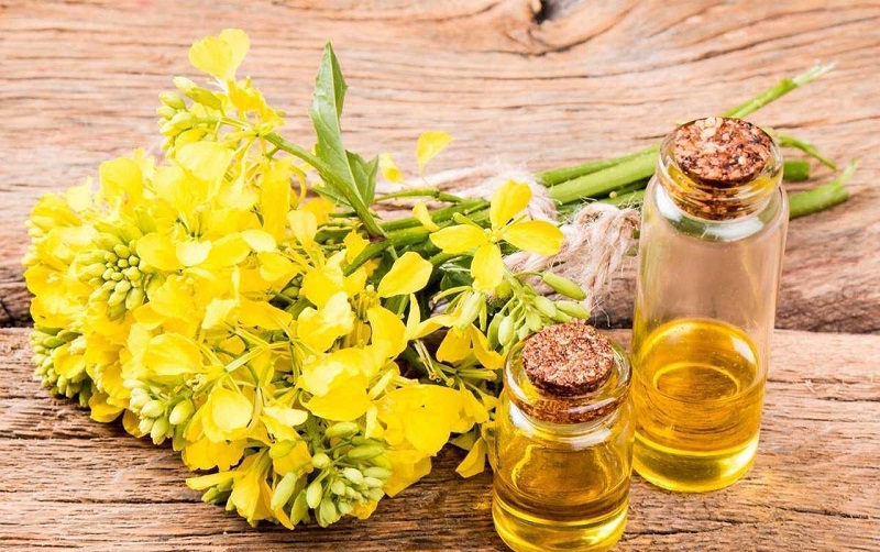 canola oil the best cooking oil for health